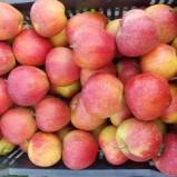 Работещ бизнес – ябълкова градина 20 дка.